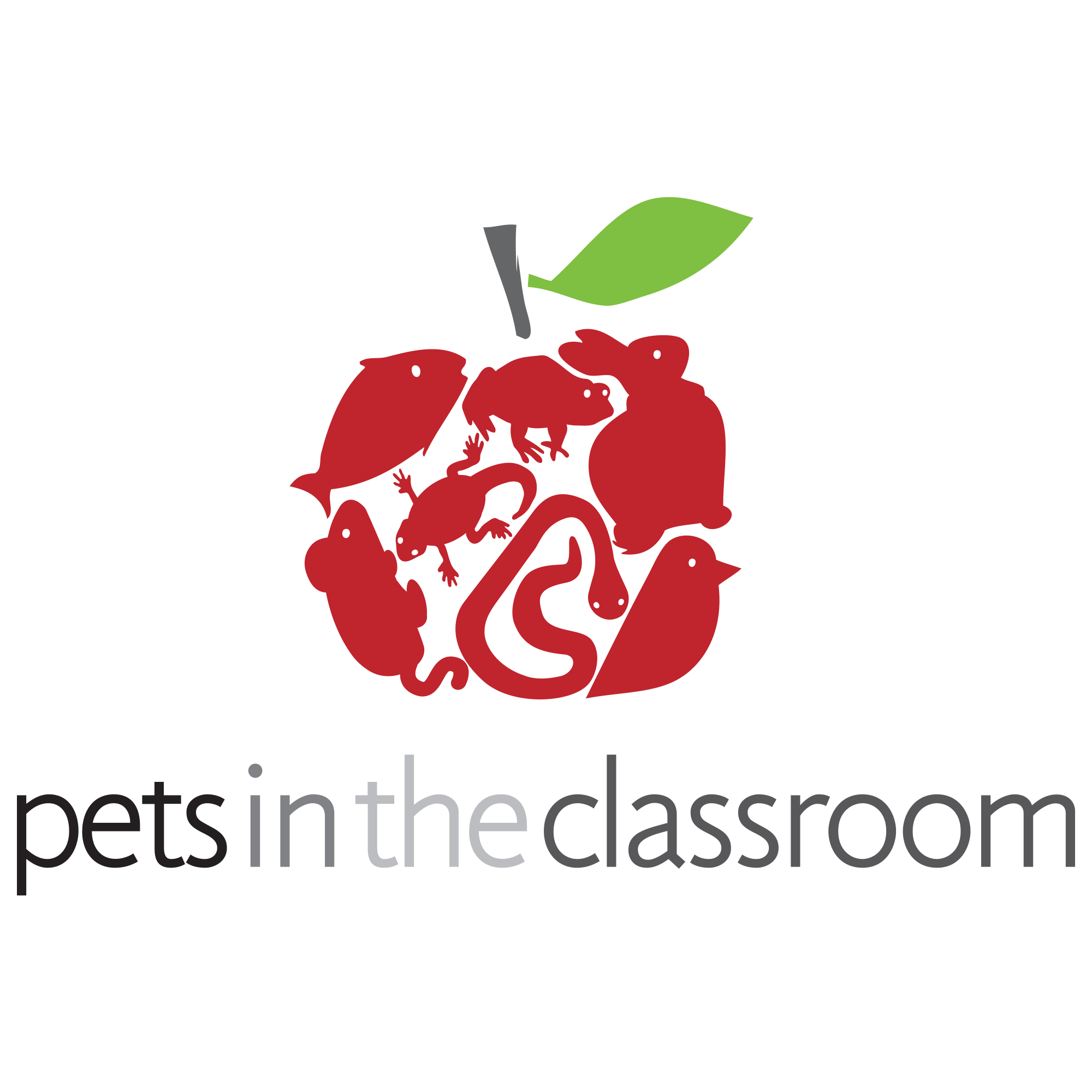 Pets in the classroom